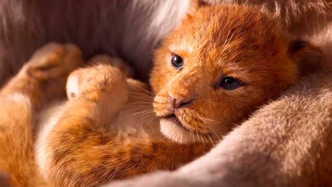 el-rey-leon-reparto