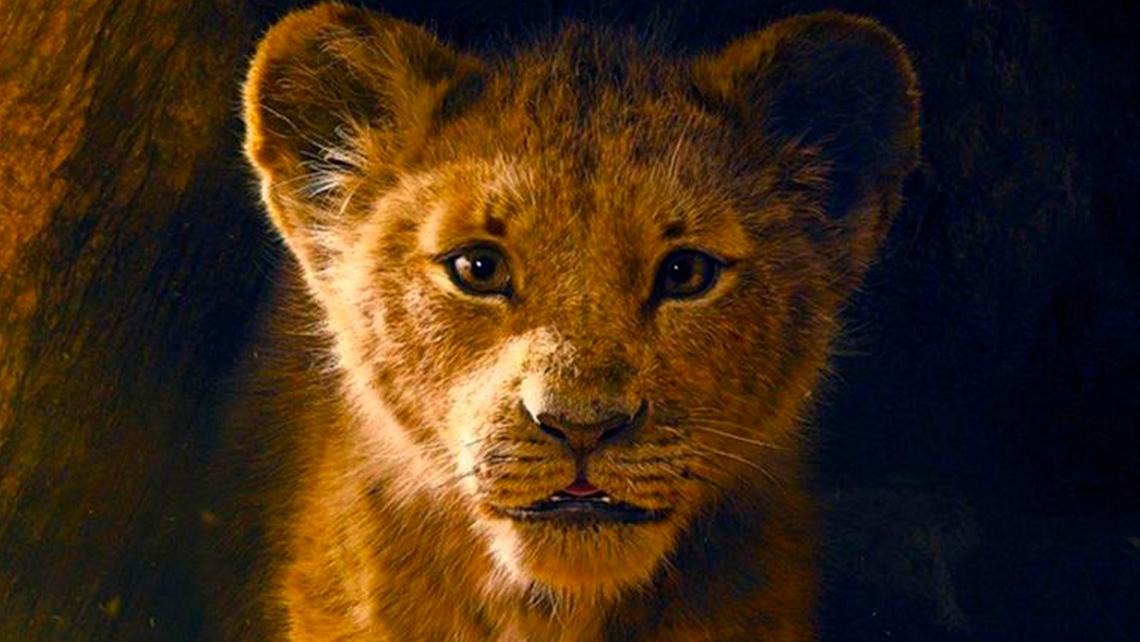 rey-leon-foto-1