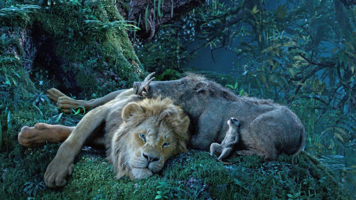 rey-leon-fotos